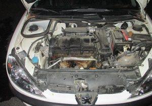 یکدستگاه خودرو پژو 206 در امیریه طعمه حریق شد
