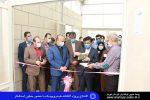 گلخانه ای به وسعت ۱۰ هکتار در شهریار افتتاح شد