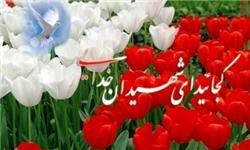 فرماندار بهارستان خبر داد نامگذاری تمامی معابر بهارستان به نام شهدا