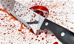 فرمانده انتظامی شهرستان اسلامشهر: وسوسههای شیطانی جان برادری را گرفت