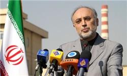 غنی سازی 20درصد در ایران مرهون شهریاری است
