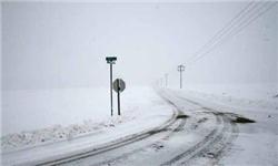 بارش برف سنگین در برخی محورهای جاده چالوس