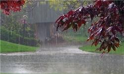 بارندگیهای اخیر البرز نوید سال زراعی پرباری را میدهد