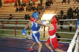 بوکسورهای نوجوان شهریاری در مسابقات کشوری طلایی شدند