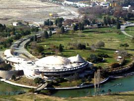 نمایش درختچه کمیاب کاخ مروارید برای عموم