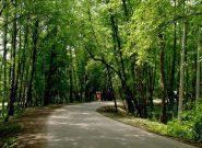 ورود به بوستان های جنگلی و عرصه های منابع طبیعی تهران ممنوع است