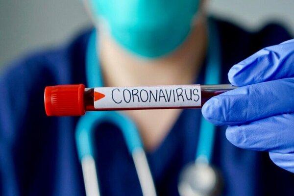 کروناویروس احتمالا از الگوی فصلی پیروی میکند