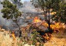 کشاورزان غرب استان تهران از آتش زدن بقایای گیاهی خودداری کنند