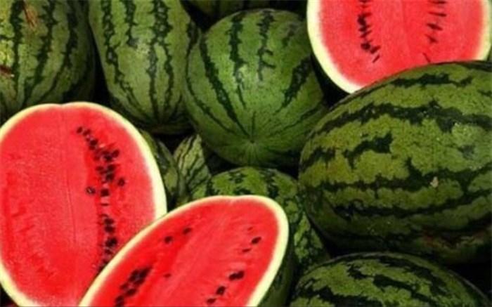 خرید «هندوانه به شرط چاقو» و خطر ابتلا به کرونا