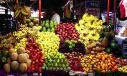17هزار تن میوه شب عید در استان تهران توزیع می شود