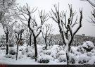 سامانه بارشی جدید یکشنبه وارد کشور میشود/ موج جدیدی از برف و باران در راه است