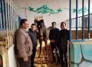 رئیس اداره ورزش و جوانان ملارد از پروژه های ورزشی بازدید کرد