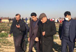 پخش لاشه های هواپیمای سقوط کرده اوکراینی در یک کیلومتر مربع
